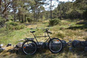Fahrrad vor finnischer Natur